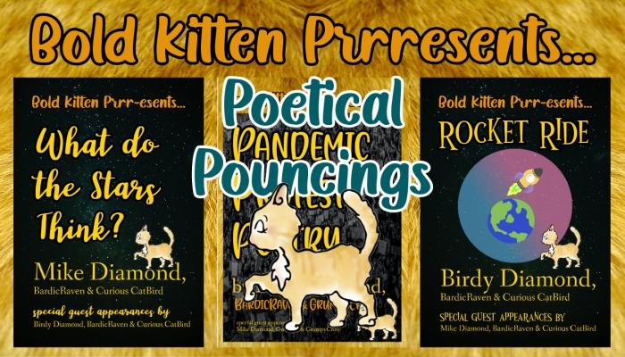 02 – BKPoeticalPounce-ings – Barbara 'Birdy' & Mike Cox-Diamond